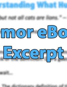 Excerpt from Humor eBook