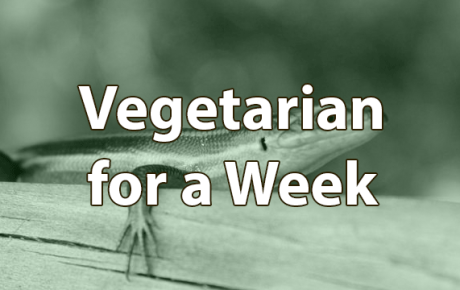 What I Learned from Being a Vegetarian for a Week