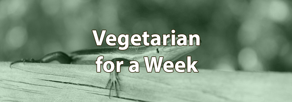vegetarian for a week